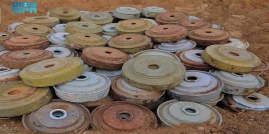 مسام تنزع 1.495 لغماً في اليمن خلال أسبوع