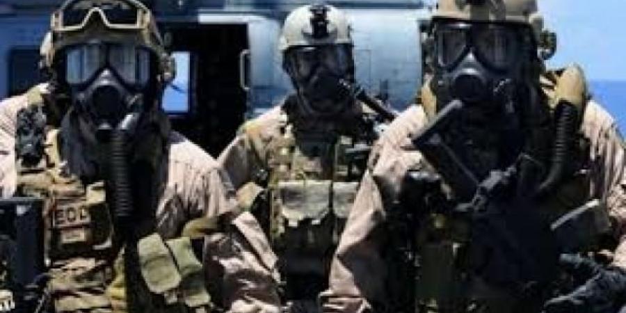 """""""الحوثيون"""" يوجهون إتهاما جديدا لبريطانيا بعد أسبوعين من وصول قوات عسكرية إلى المهرة"""