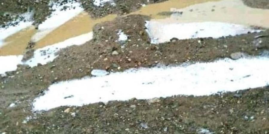 شاهد بالصور .. البرد يكسو محافظة عمران ويثير قلق المزارعين
