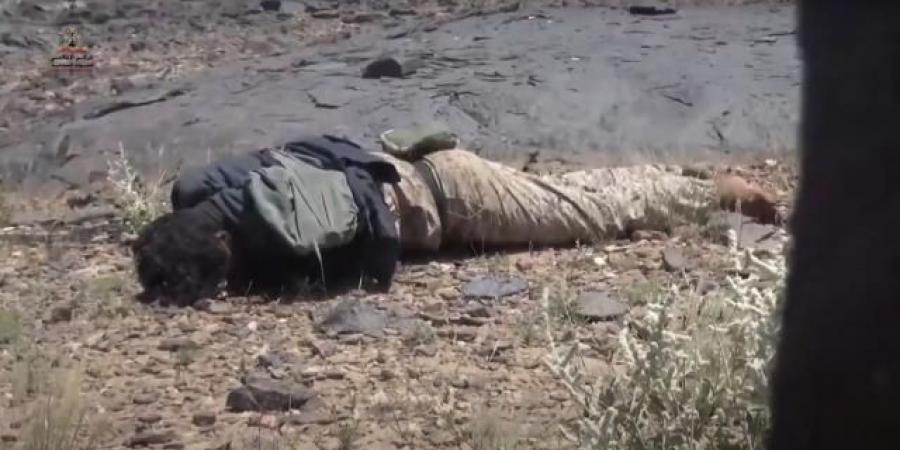 بعد سيطرت الجيش على أهم المواقع ... جثث الحوثيين تملأ الشعاب في حريب جنوبي مأرب