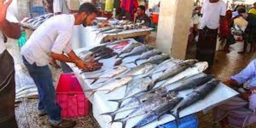 تعميم هام لباعة الأسماك في عدن