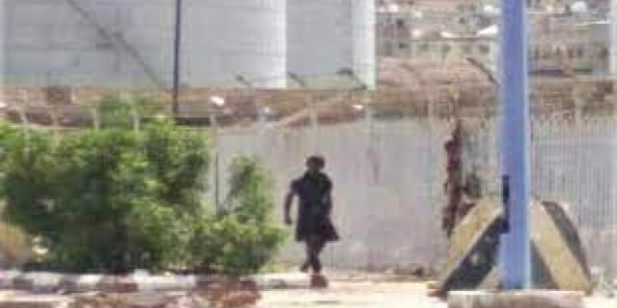 """""""يشرب دماء الكلاب""""...القبض على مختل في عدن اثار الرعب"""